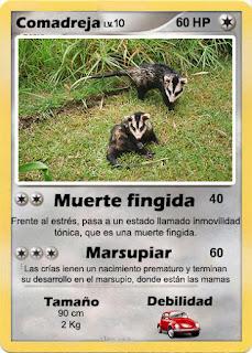 Cartas de Pokemon con Fauna uruguaya (Pradera) - Comadreja