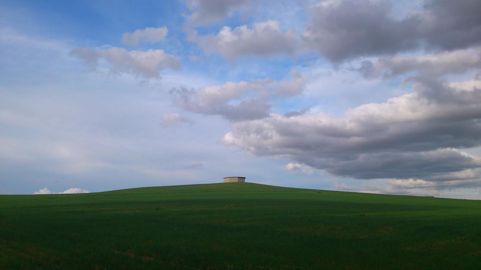 Horizonte con campo y cielo