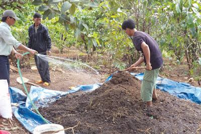 phương pháp ủ phân hữu cơ