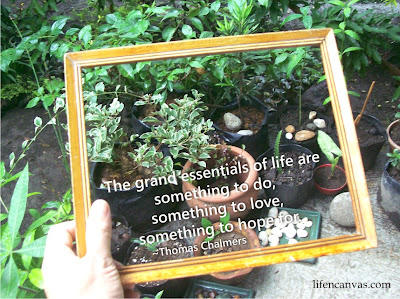 framing photos with quotes