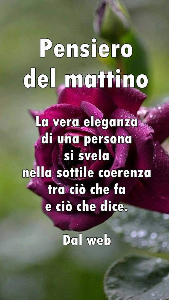 Un Cuore A Spasso Fanpage Pensiero Del Mattino