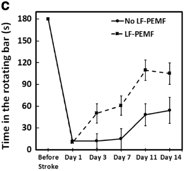 図:低周波パルス電磁場の脳梗塞治療効果