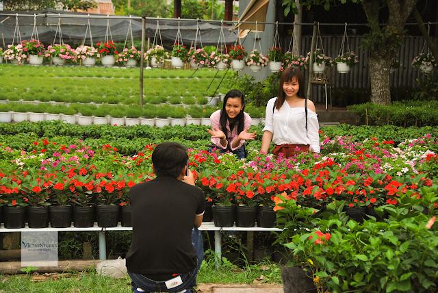 Thanh niên rất hào hứng với bức tranh hoa tại Sa Đéc
