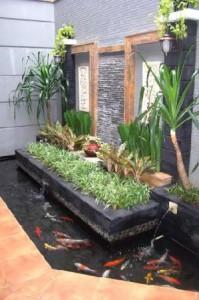 Desain Taman Rumah Minimalis kolam ikan