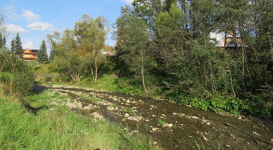 Potok Jałowiec zwany Czatożanką.