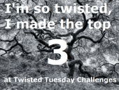 Twisted Challenges Top 3!