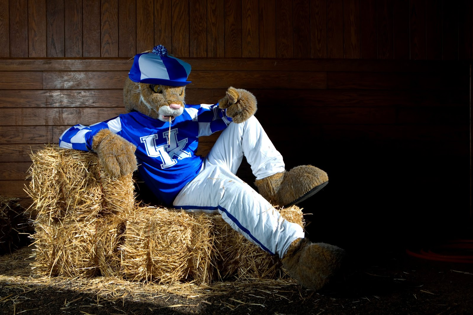 ukagstudents beyond the costume a look into the life of a mascot