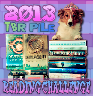 Challenge: TBR Pile 2013 Challenge Progress