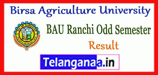 BAU Ranchi Birsa Agriculture University UG PG Diploma 1st 3rd 5th 7th Semester Results