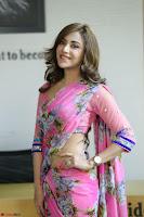 Angela Krislinzki Rogue Movie Fame Telugu Actress in Saree Backless Choli 099.JPG