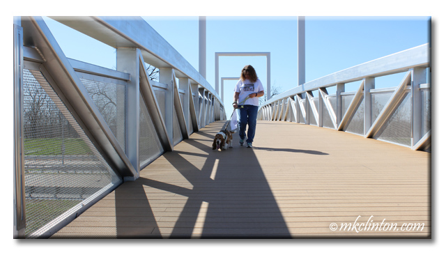 Bentley Basset Hound and I stroll across a bridge