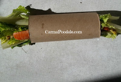 vegetables stuffed in a empty toilet paper roll.
