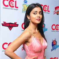 Shriya hot  in a funtion