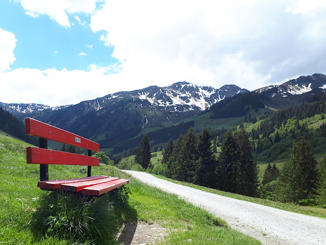 Hiking trail in the Wildschönau valley in Tirol Austria