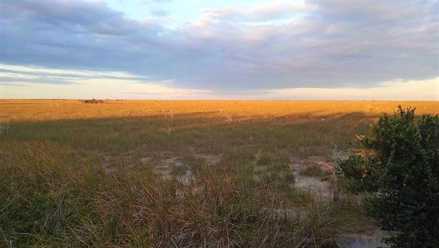 tramonto Pahayokee Overlook