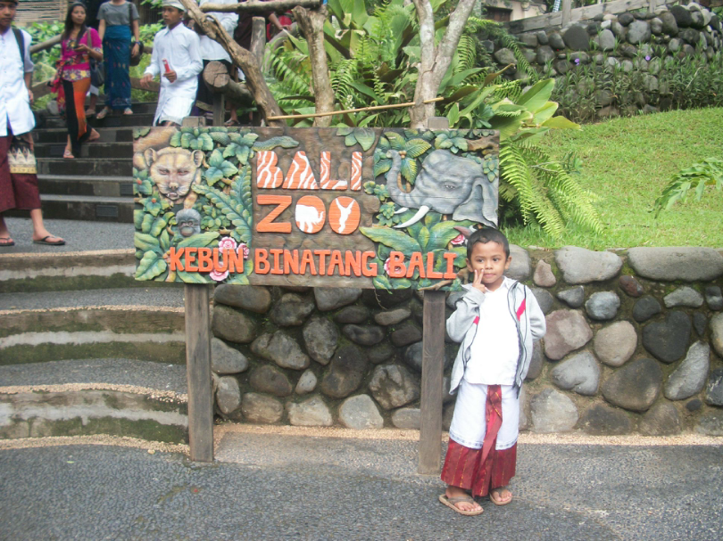 Contoh pengembangan daya tarik wisata, kebun binatang bali zoo