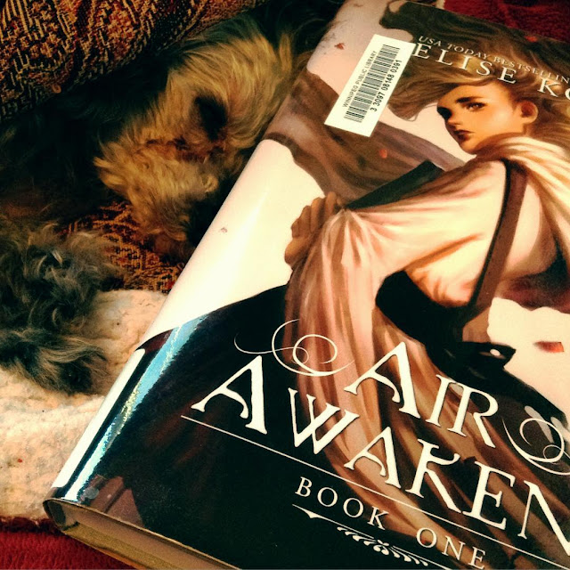 Murchie lies on his side in his blanket cave. Slightly in front of him is a hardcover copy of Air Awakens. Its cover features a pale-skinned girl whose golden hair and white robe both swirl around her. She clutches a book to her chest.