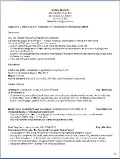 finance manager resume model in word format free download