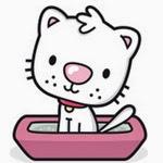 L'éducation d'un chaton : le rendre propre