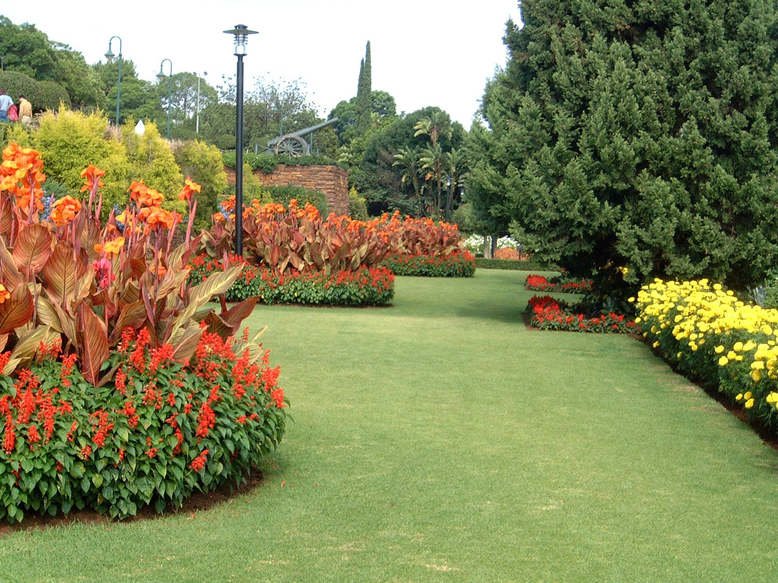 figuras de paisagens da grama imagens coloridas