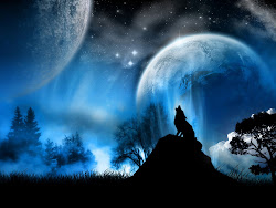 wolf wallpapers wolves quotes howling background desktop backgrounds sad wall cool howl related posts ground alone epic fire hd