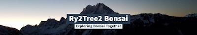 Ry2Tree2 Bonsai Blog