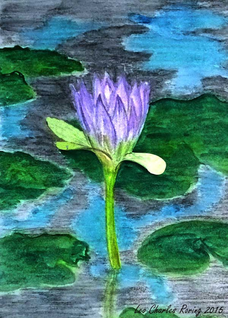 Colored pencil drawing of water lily from Merauke's Wasur National Park