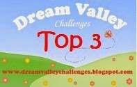 I Won a Top 3 at Dream Valley