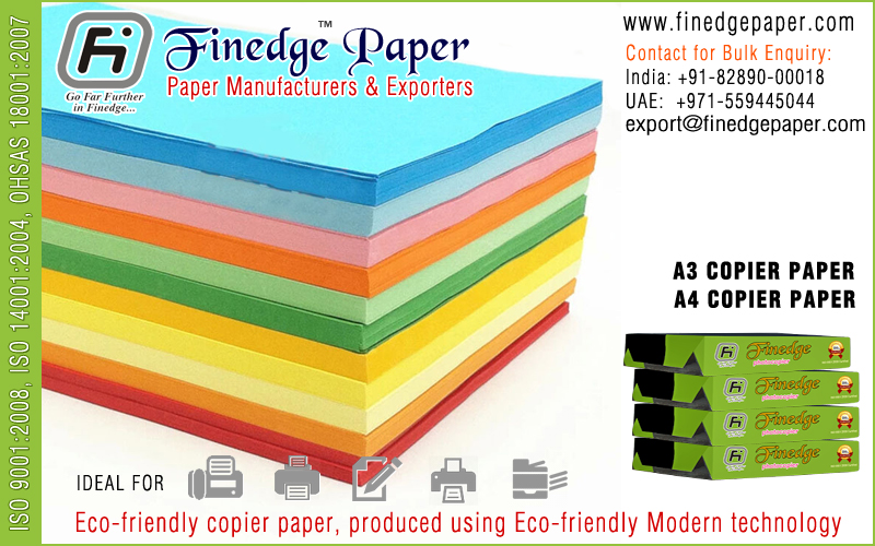 Pulp & Paper Manufacturing Sector
