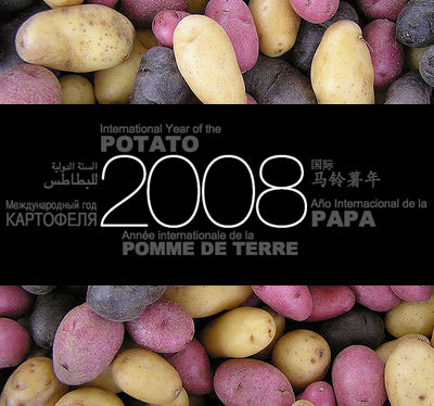 The international year of the potato poster