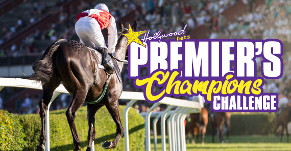 Premier's Champions Challenge - Hollywoodbets - Horse Racing - Betting