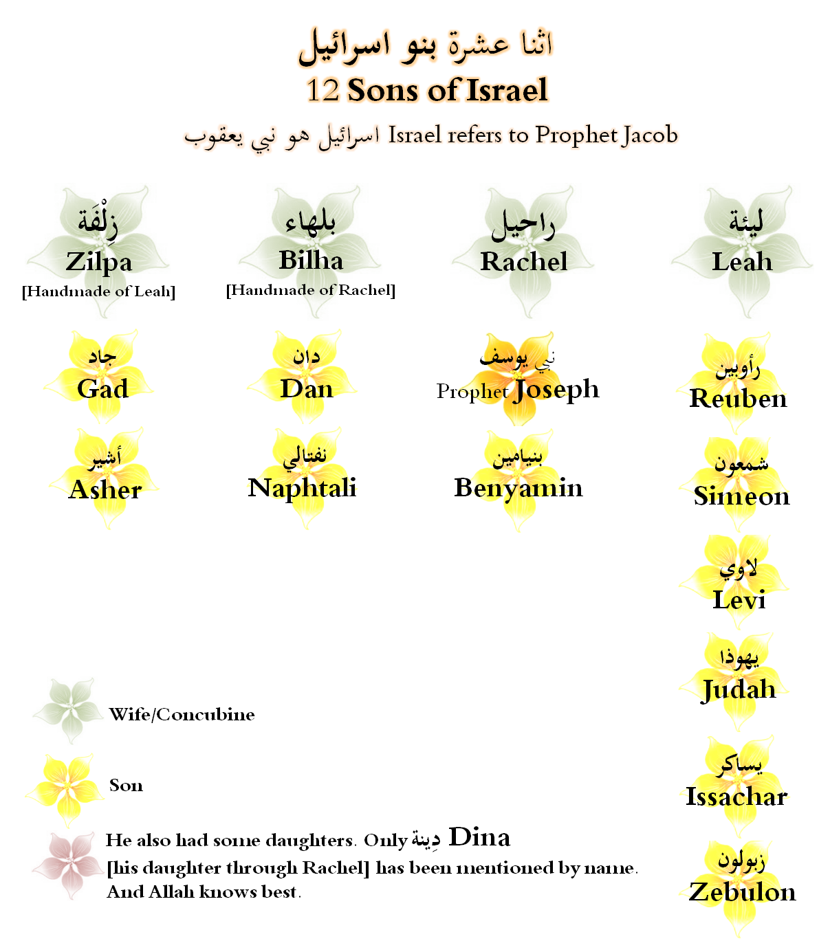 12 Sons Of Prophet Yaqoob Jacob Peace On Him Children Of