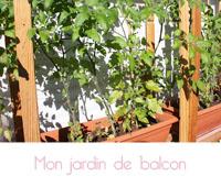 Jardin sur le balcon : cultiver ses fruits et légumes