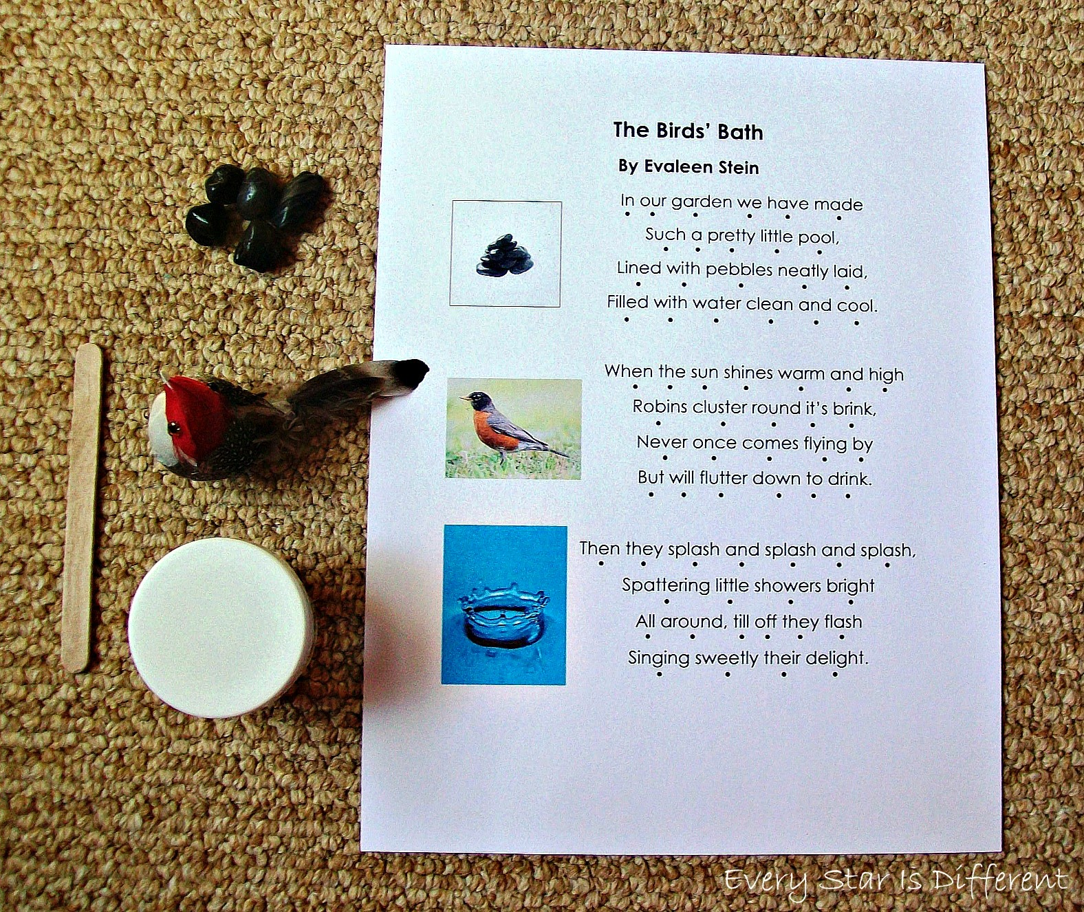 Monessori Bird Poem Activity with Free Printable
