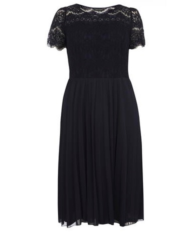 Navy Pleated and Lace DP Dorothy Perkins Curve