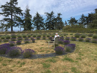Beth enjoying the lavender fields