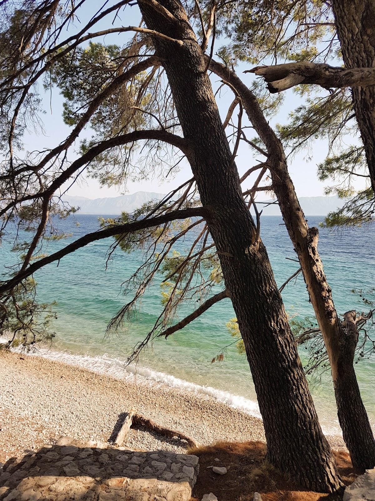 urlaub im süden kroatiens halbinsel peljesac, trsteno und dubrovnik