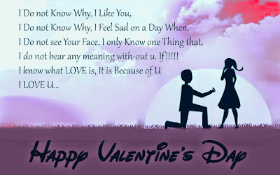 Happy ​Valentine Day 2017