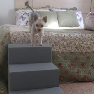 como comprar escadas para cães