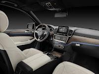 2017 Mercedes GLS 19