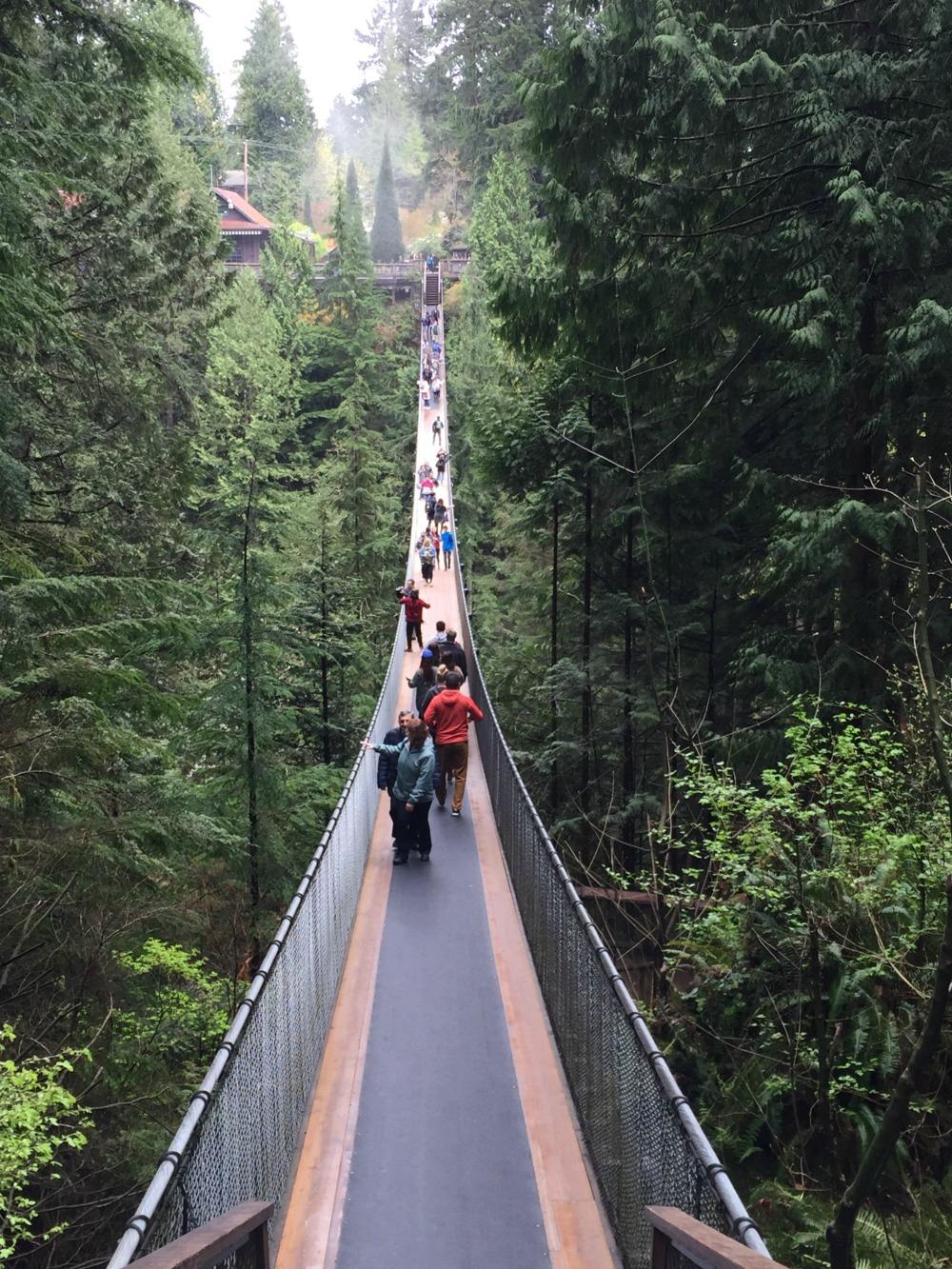 Capliano Suspension bridge