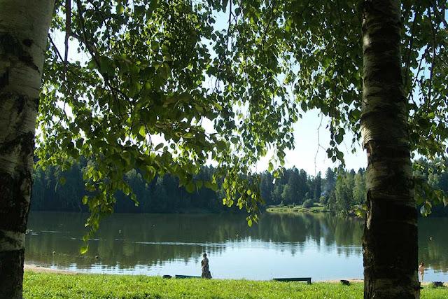 Труп мужчины обнаружили в Лесном озере Сергиев Посад