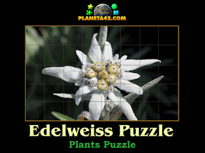 Edelweiss Puzzle