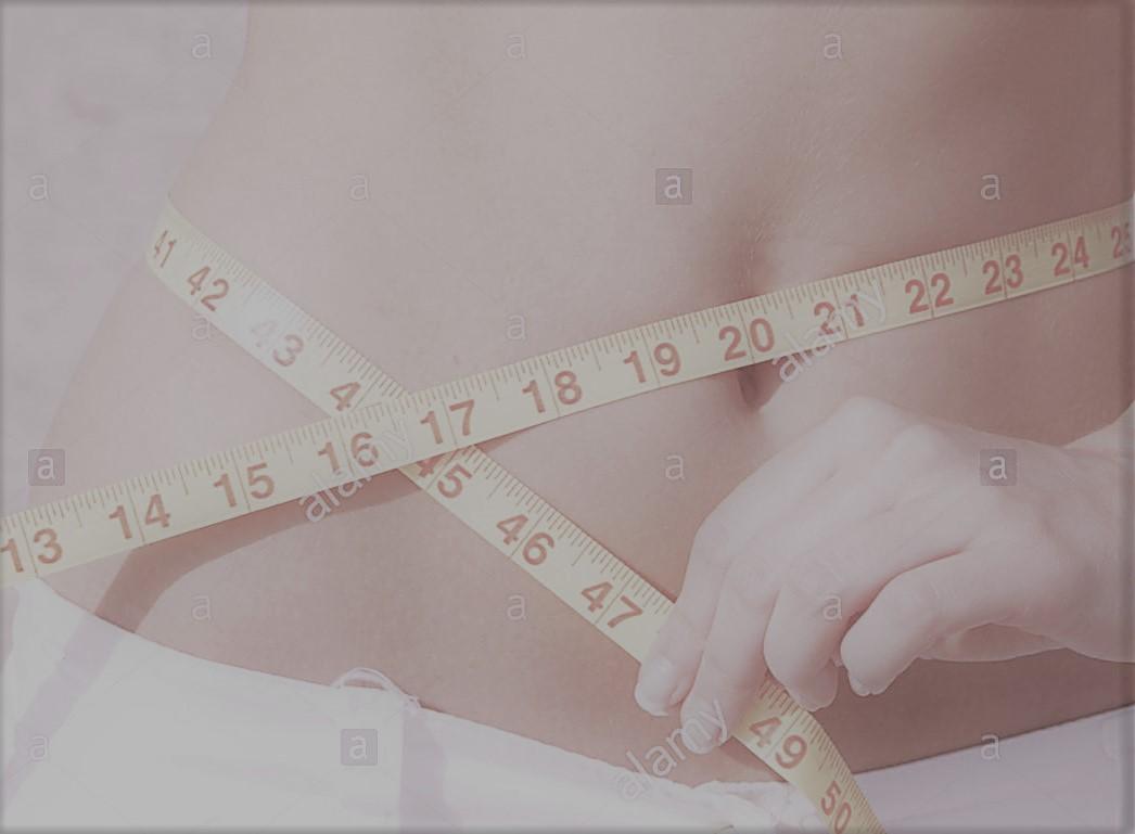 Health Nutrition Blog Body Mass Index And Waist To Hip Ratio