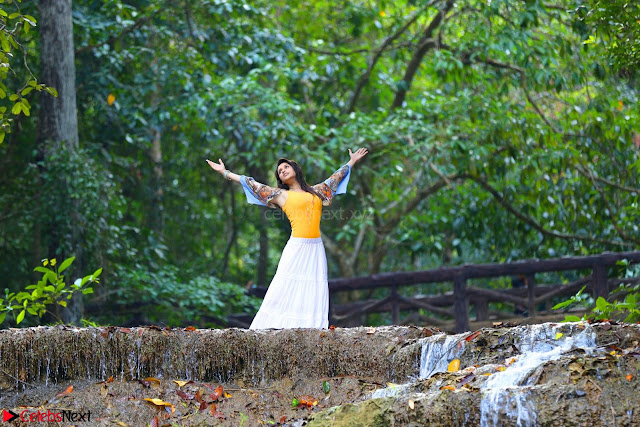 Mannara Chopra sizzles in song From Rogue Movie (4).JPG