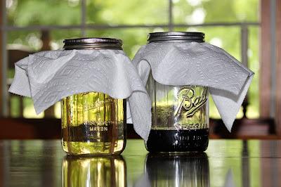 IMG 5036 - Homemade Wine Vinegar