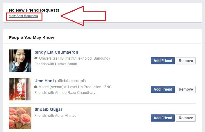 How To Send Unlimited Friends Requests At Once Without Getting Blocked