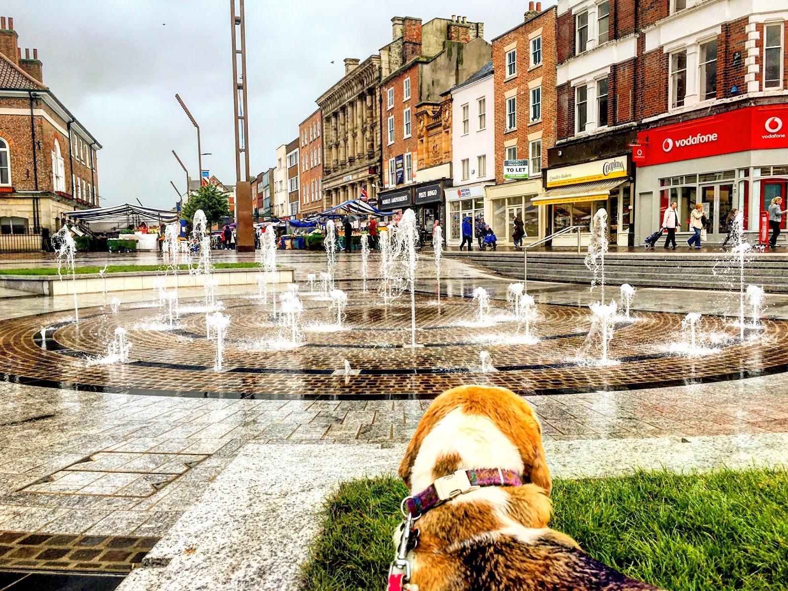 Dog Friendly Stockton On Tees