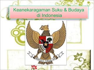 Keanekaragaman suku dan budaya bangsa Indonesia - berbagaireviews.com
