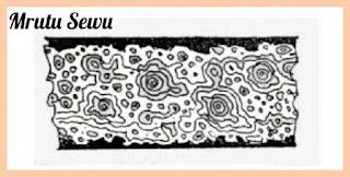 PAMOR MRUTU SEWU